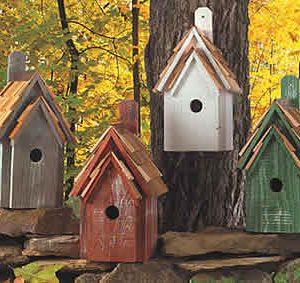 birdhouse-bluebirdmanor