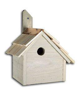 birdhouse-wren