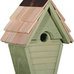 birdhouse-wren-wind