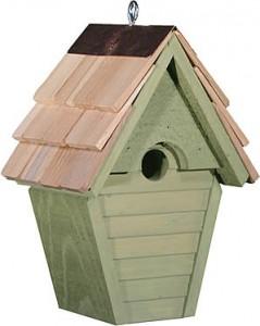 birdhouse-wren-wind