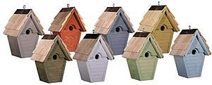 birdhouse-wren-wind-group
