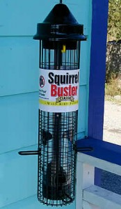 feeder-squirrel-buster-classic