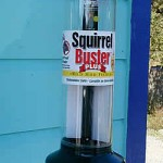 feeder-squirrel-buster-plus