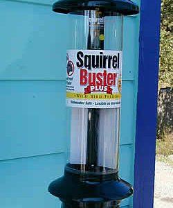 feeder-squirrel-buster-plus